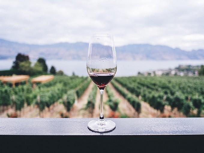La ruta del vino en Mendoza - Blog Ruta0.com